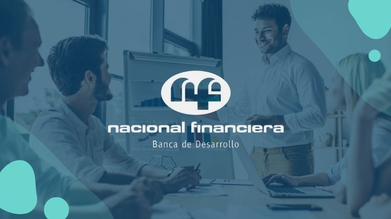 nacional financiera nafin